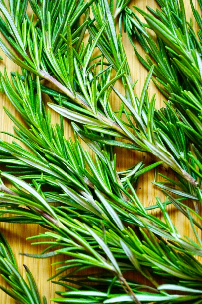 Rosemary Final